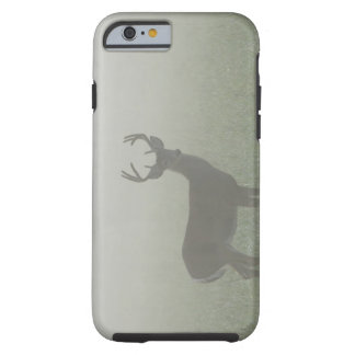 Great Smoky Mountains National Park, Tennesse, Tough iPhone 6 Case