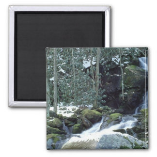 Great Smoky Mountains, NC 2 Inch Square Magnet