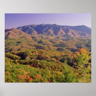 Great Smoky Mountains NP, Tennessee, los E.E.U.U. Póster