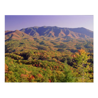 Great Smoky Mountains NP, Tennessee, USA Postcard