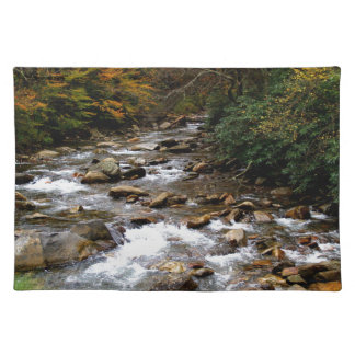 Great Smoky Mountains river Placemat