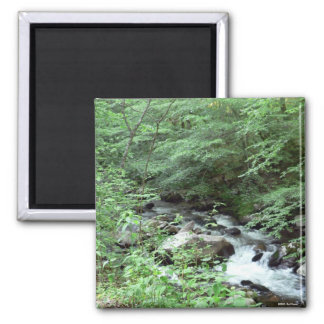 Great Smoky Mountains Stream Magnet