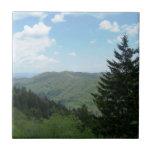Great Smoky Mountains Tile