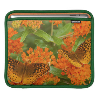 Great Spangled Fritillaries on Butterfly Milkweed Sleeve For iPads