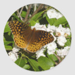 Great Spangled Fritillary on Mountain Laurel Photo Classic Round Sticker