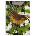 Great Spangled Fritillary on Mountain Laurel Photo Clipboard