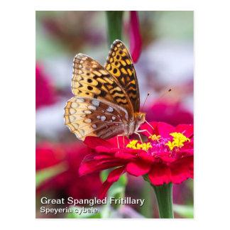 Great Spangled Fritillary Postcard
