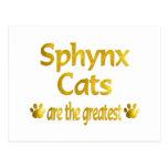 Great Sphynx Postcards