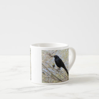 Great-tailed Grackle Espresso Cup