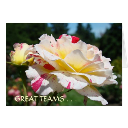 GREAT TEAMS Committed LEADERS Cards Notecards