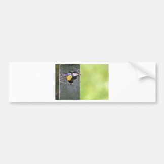 Great tit parent in hole of nest box bumper sticker