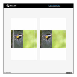 Great tit parent in hole of nest box decals for kindle fire