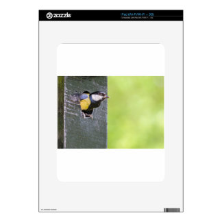 Great tit parent in hole of nest box iPad decals