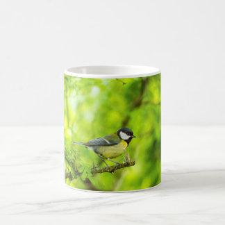 Great tit, parus major coffee mug