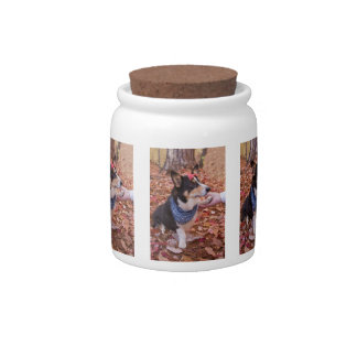 Great to See You! Candy Jars