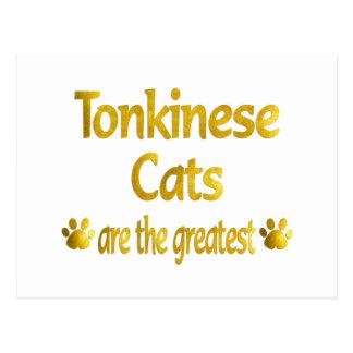Great Tonkinese Postcard