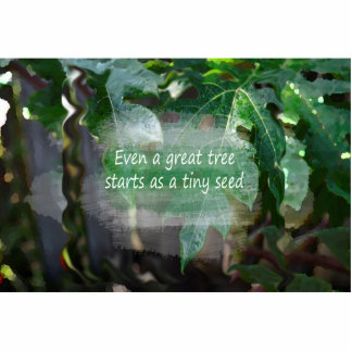 great tree starts as seed leaf background cut outs