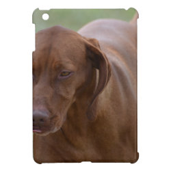 Case Savvy iPad Mini Glossy Finish Case with Vizsla Phone Cases design