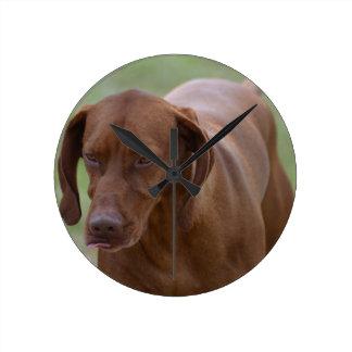 Great Vizsla Dog Round Clock