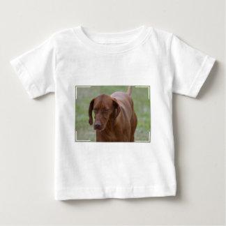 Great Vizsla Dog T-shirt