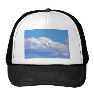 Great white egret flying in the beautiful sky mesh hats