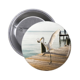 Great White Egret Heron Gracefully Snacks Pinback Buttons