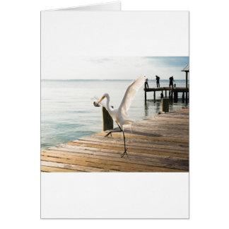 Great White Egret Heron Gracefully Snacks Card