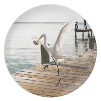 Great White Egret Heron Gracefully Snacks Plates