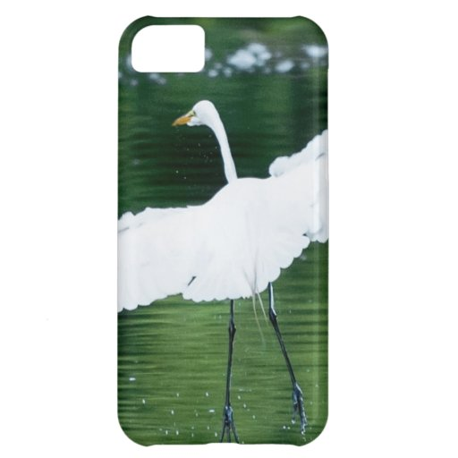 Great White Egret iPhone 5C Cover
