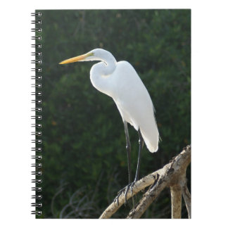 Great White Egret Notebook