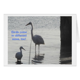 Great White Egret posing with smaller bird Card