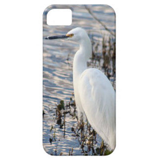Great White Heron Barely There iPhone 5/5S Case
