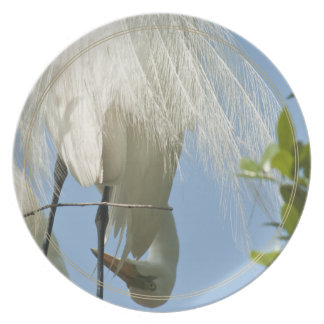 Great White Heron Bottoms Up Plate