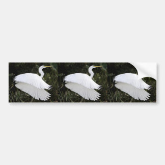 Great White Heron Bumper Stickers