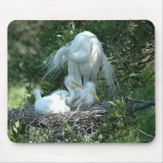 Great White Heron Mouse Pad