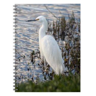 Great White Heron Notebook
