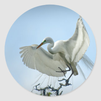 Great White Heron Photograph Classic Round Sticker