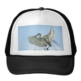 Great White Heron Photograph Hat