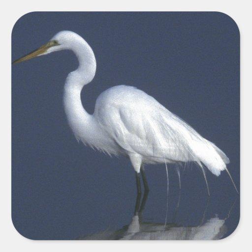 Great White Heron Sticker
