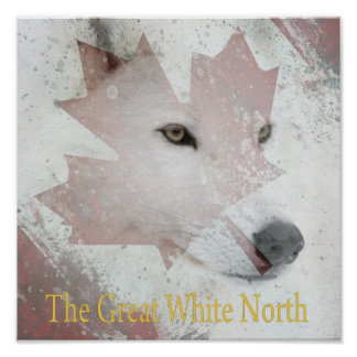 great white north beta poster