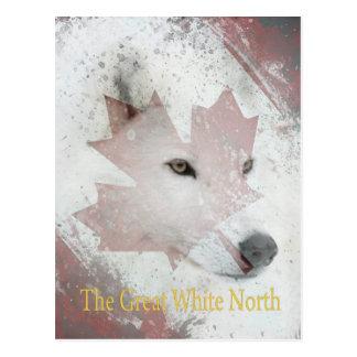 great white north postcard