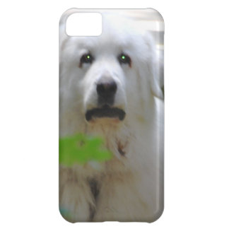 Great White Pyrenees Dog Case For iPhone 5C