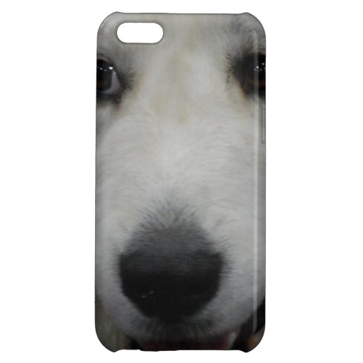 Great White Pyrenees Dog iPhone 5C Cover