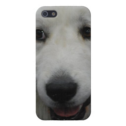 Great White Pyrenees Dog iPhone 5 Cases