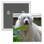 Great White Pyrenees Dog Pin