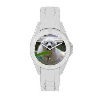Great White Pyrenees Dog Wristwatches