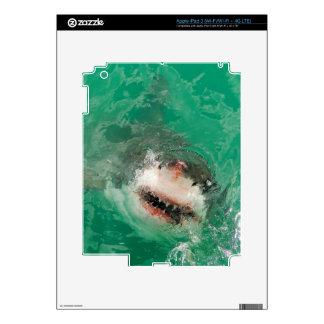 Great White Shark1 iPad 3 Skins