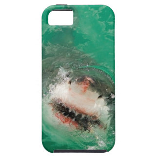 Great White Shark1 iPhone SE/5/5s Case