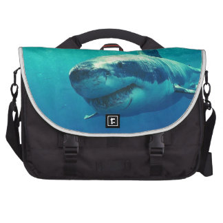 GREAT WHITE SHARK 1 LAPTOP BAG