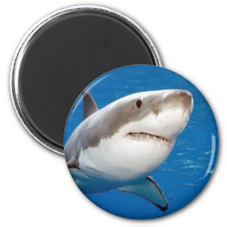 Great White Shark 2 Inch Round Magnet